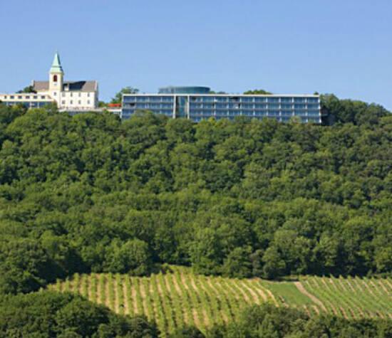 Beispiel: Außenansicht des Hotels, Foto: Terrasse Kahlenberg.